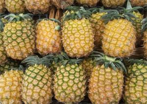 ハワイ種パイナップル